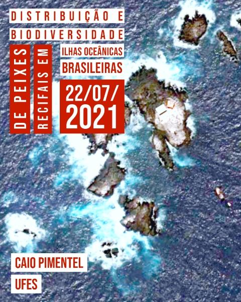 CEBIMário: Distribuição e biodiversidade de peixes recifais em ilhas oceânicas brasileiras