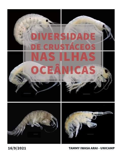 CEBIMário: Diversidade de crustáceos nas ilhas oceânicas: taxonomia, ecologia e genômica populacional